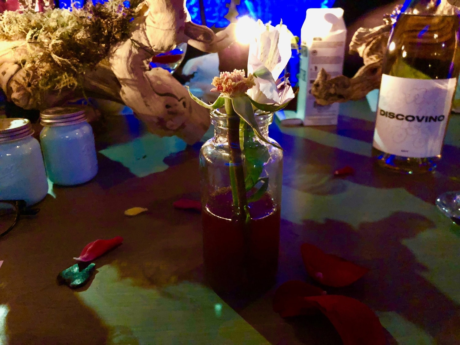 The Flowering of the Strange Orchid | Disco Dining Club
